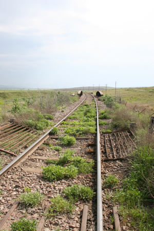 Bahngleise in der Pampa